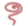 logo19rood spiraal.png