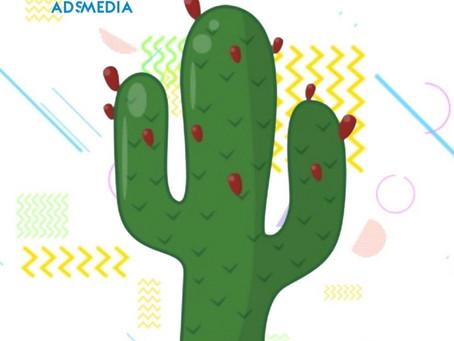 El famoso nopal de México