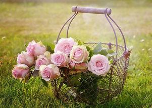 roses-1566792_1280_edited_edited.jpg