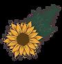 floral-02.png