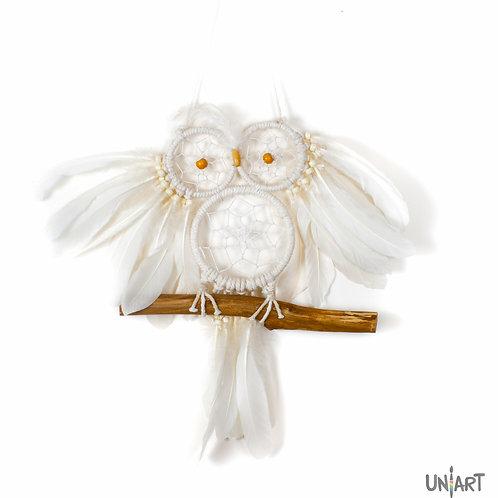 Dreamcatcher the Spirited owl