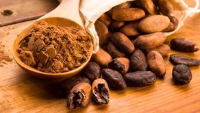 5 Benefits of Cocoa