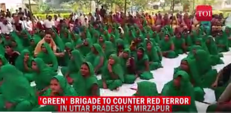 "The reaction's ""women's 'green' brigade"", shown in Indian TV."