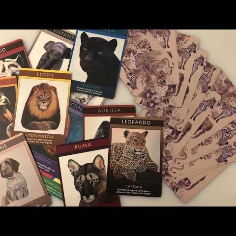 Il simbolismo degli animali: intervista a Paola Rava
