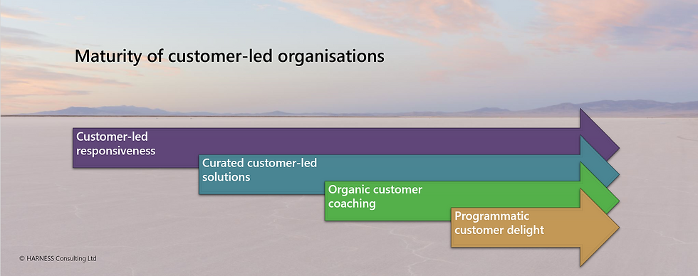 Maturity of Customer-Led Organisations.p