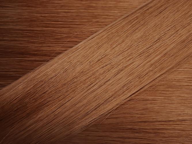 Light Brown Hair Sample