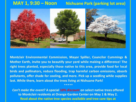 Arbor Day Weekend 2021: Help replenish Montclair's aging, native tree canopy!