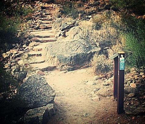 Cholla Trailhead (our meeting spot)