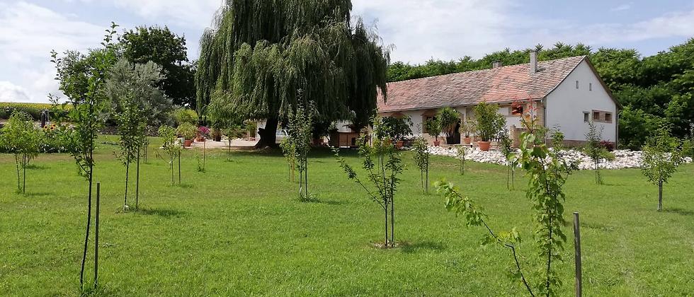 KA-77 - 440 m2 Wohhaus - 5 Hektar - Land - See - Fruchtplantage - 25 v. See