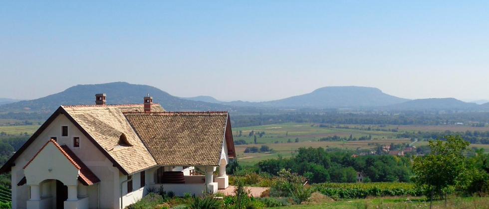 LT-01 - Etabliertes Familienweingut - Weinkeller zu verkaufen ! 8.5 Hektar Land