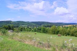 Immobilien in Ungarn