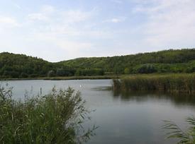 Balatonalmadi, Balatonfüred
