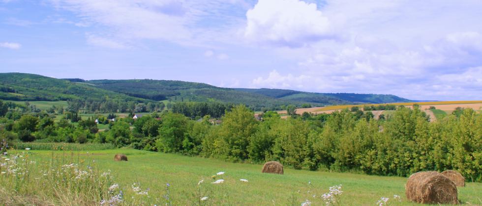 BM-89 - 3-er Grundstück - 6'650 m2 mit Panorama...