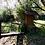 Thumbnail: 6'200 m2 - Traumgrundstück - Teich, Holzhaus...