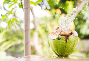 5 Reasons Coconut Water Is Great For Your Health