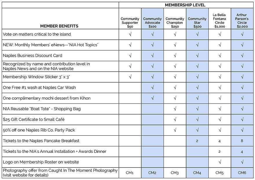 NIA Membership Benefits Matrix-01.jpg