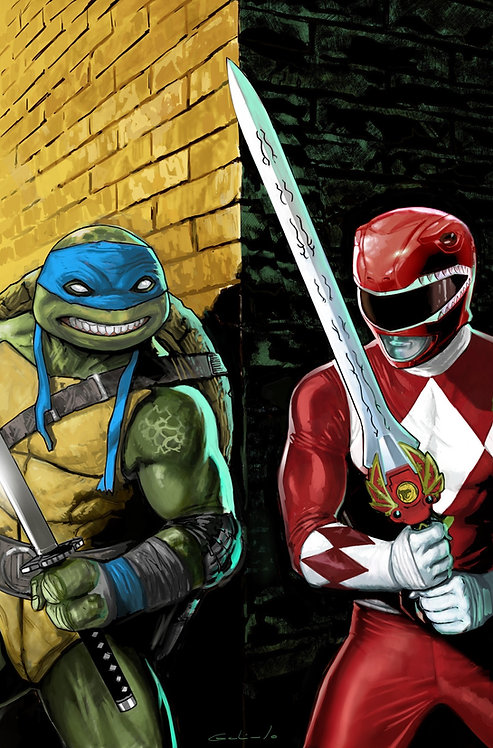 Mighty Morphin Power Rangers TMNT COMPLETE Scott Wade Collection