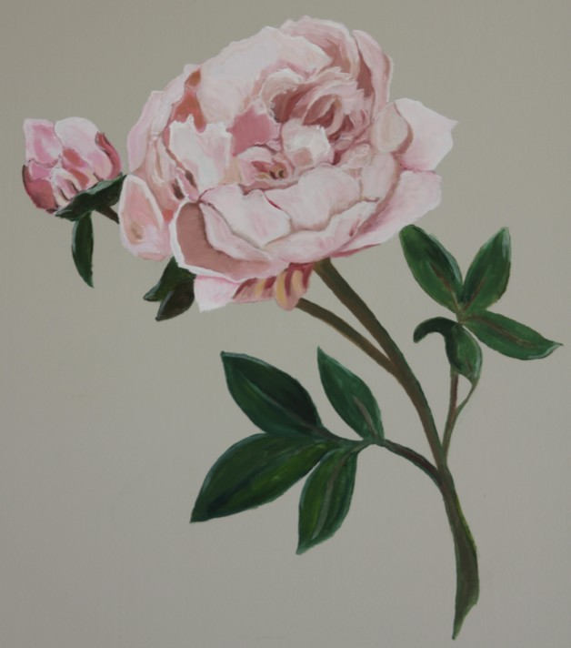 pivoine decor