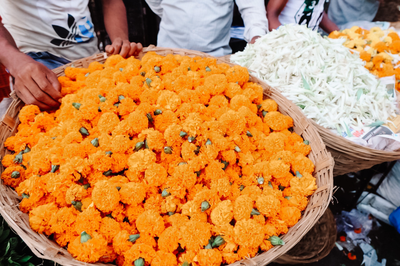 All the flower mandalas