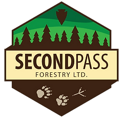 Second Pass Forestry Ltd., first nations forestry consultant, Second Pass Forestry, Second Pass, SPF, SPFL, First Nations Foresty, Aboriginal, RPF, Professional, Forestry, BC, Forest, Natural Resources, Forest management, forest consultant, forestry consultant kamloops, first nation forestry consultant
