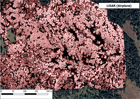 LiDAR advanced analytics, SPFL, SPF, first nation forestry