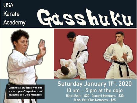 USA Karate Gasshuku 2020!