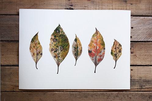 'Earth' Cotton Rag Print