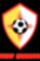NMYSA-Vector-Update-V1.PNG