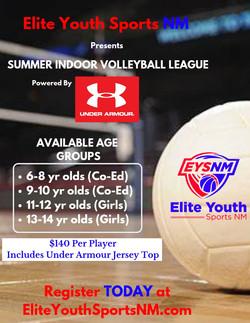 EYSNM Under Armour Volleyball school fly