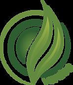 Verdes_Logo_Web-3.png