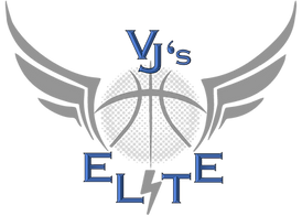 VJ NEW Logo silver.png