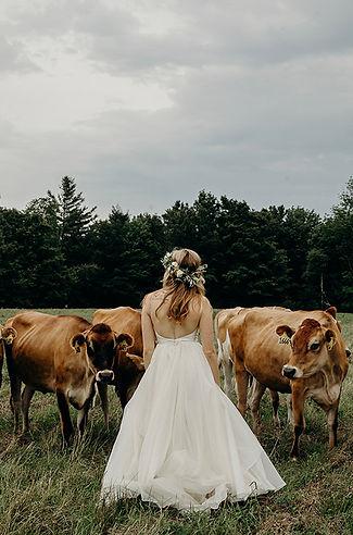 © Erin Wheat Co.