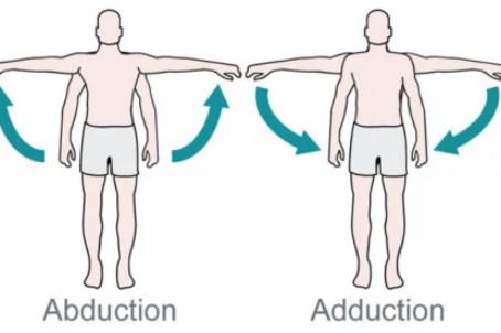 Abduction Adduction ?