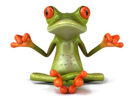 Amphiphile ? Au secours les racines, ou comment une grenouille peut être très utile !
