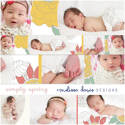 SIMPLY SPRING 3x3 ACCORDION ALBUM PHOTOSHOP TEMPLATE