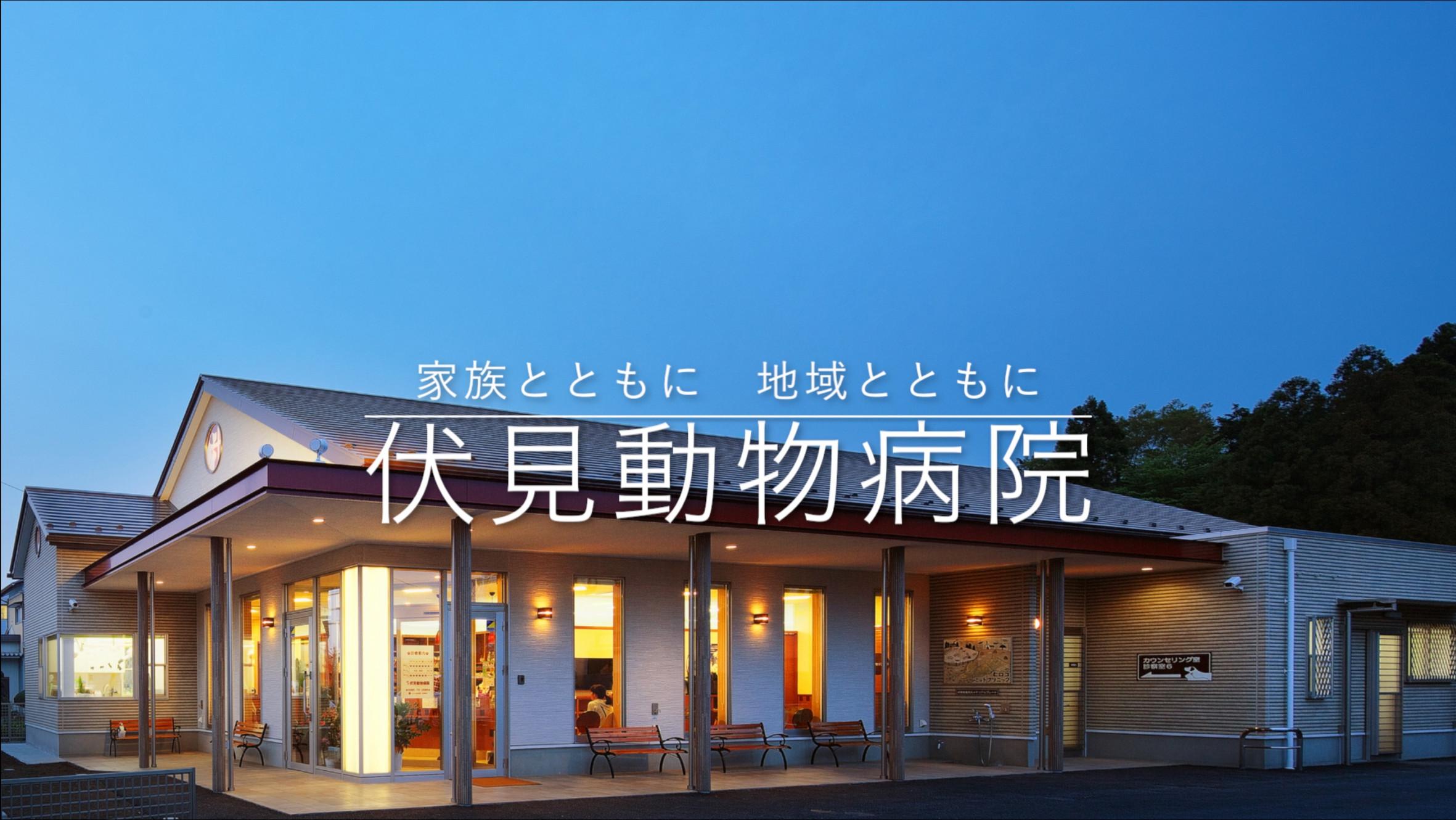 伏見動物病院|栃木県益子町・宇都宮市|整形外科・眼科等の専門診療