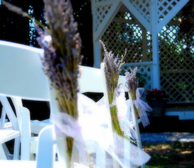 White chairs with long flowers attached to the outside