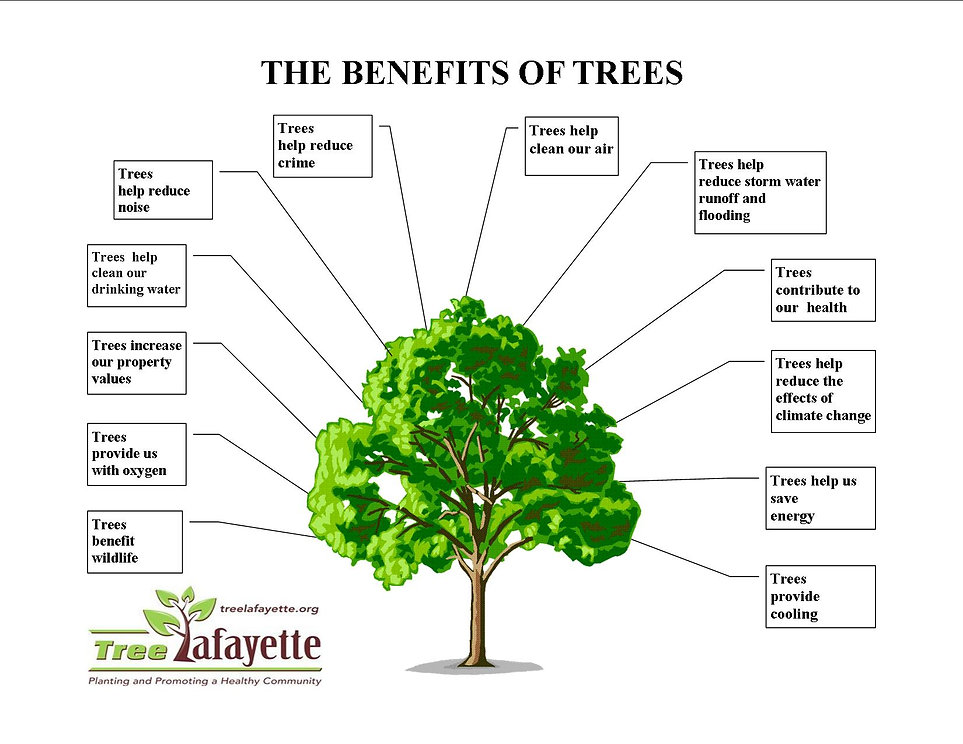 Benefits of Trees diagram
