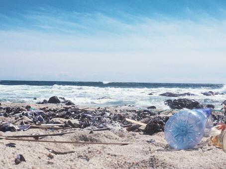 #Plasticfreebeaches public invitation