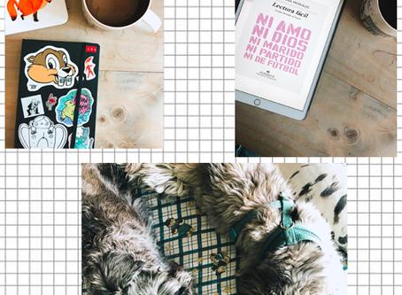 Días de cuarentena | Así vivimos y buscamos creatividad durante la cuarentena