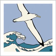 albatross1