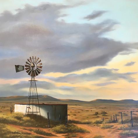 #908 Karoo Windmill.jpeg
