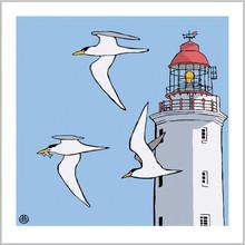 Terns.Lighthouse.