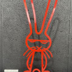 DK05 Befokte Bunny