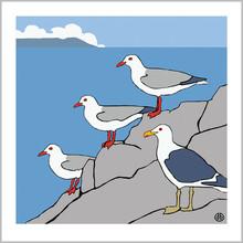 three.gulls