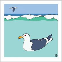 Gull.Kelp.