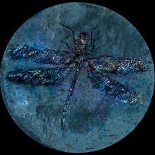 GC13 Dragonfly 1 Round