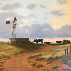 DM10 Karoo Windmill #907