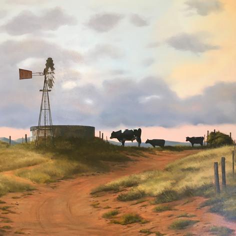 #907 Karoo Windmill.JPG