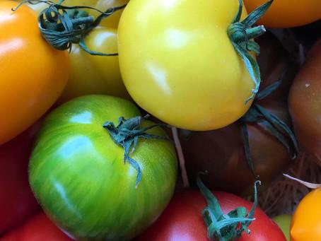 Top tomato treats!
